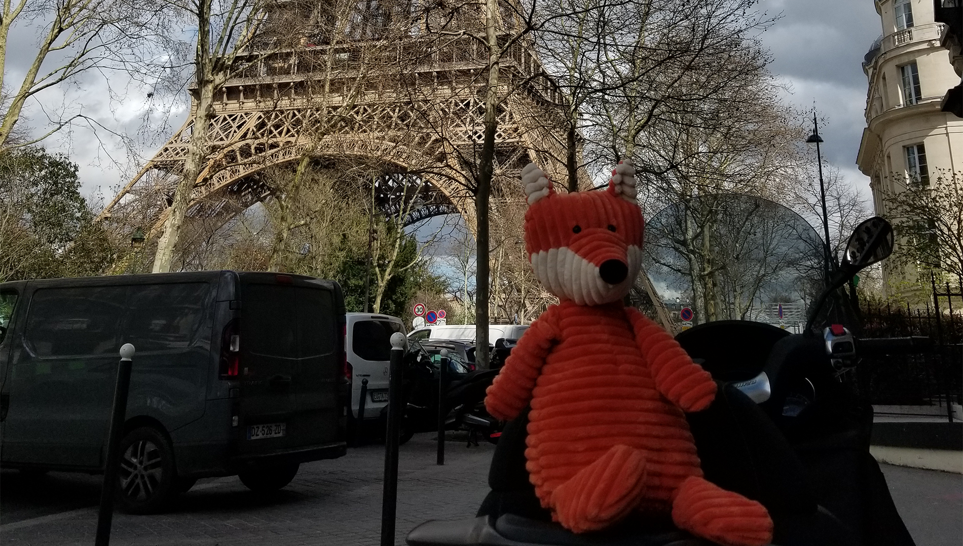 smartfox in paris.png